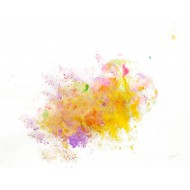Created by bouncing balloons with paints on papaer